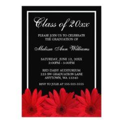 Red Gerbera Daisy Graduation Announcement Invitation Card
