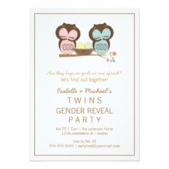 Cute Owls Twin Baby Gender Reveal Party Invitation Card