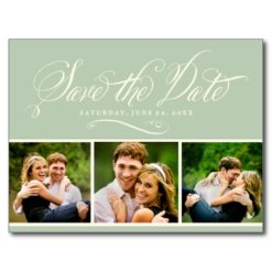 Sage Photo Save The Date   Calligraphy Script Postcard