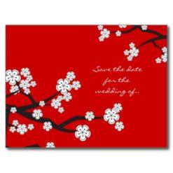 White Sakura Cherry Blossoms Save The Date Wedding Postcard