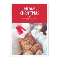 Meowy Christmas Cute Cat Holiday Photo Card
