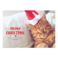 Meowy Christmas Cute Cat Holiday Photo Cards